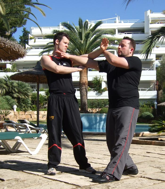 Sifu André beim BiuTze-Privatunterricht mit Sifu Jan-Holger Nahler auf Mallorca